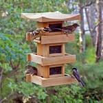 Hanging Bird Feeder Plans