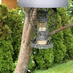 Hanging Bird Feeder Squirrel Proof