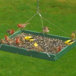 Hanging Bird Feeder Trays