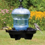 Hanging Bird Water Feeder