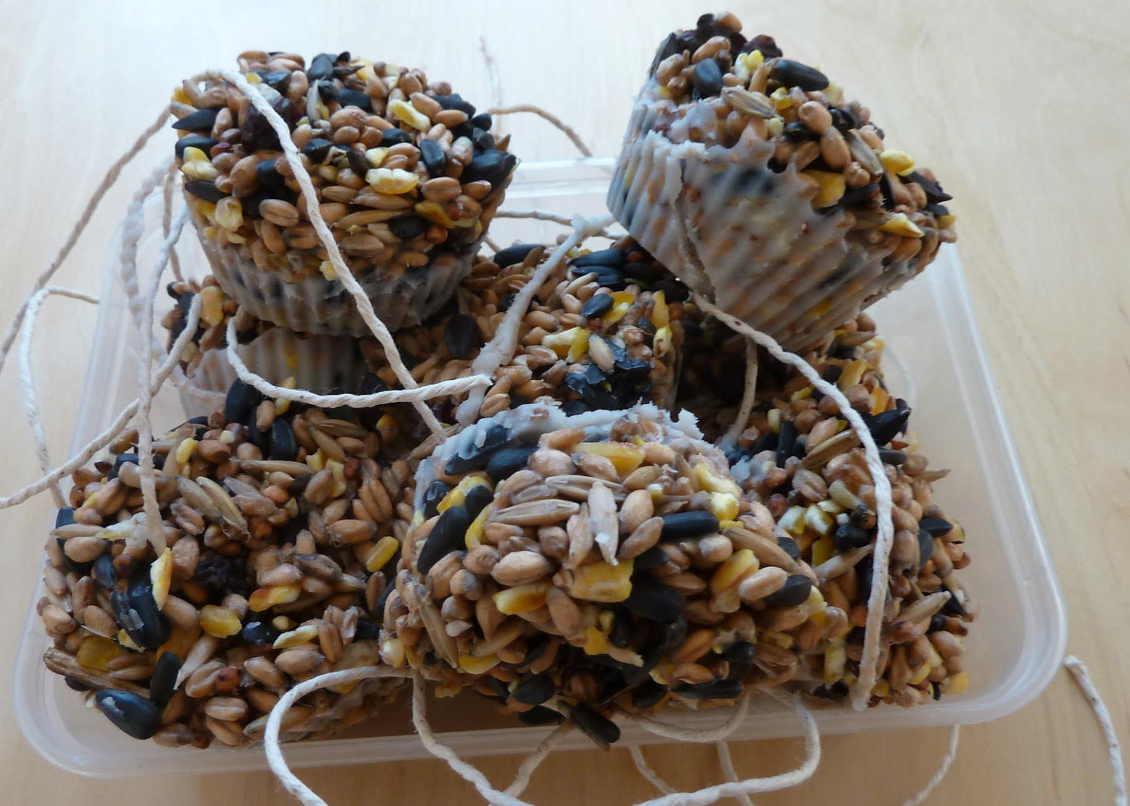Homemade Bird Food Blocks
