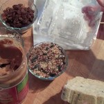 Homemade Bird Food Ingredients