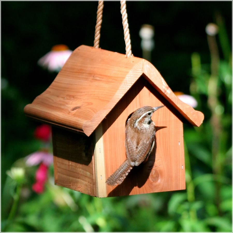 Homemade Bird Houses Plans