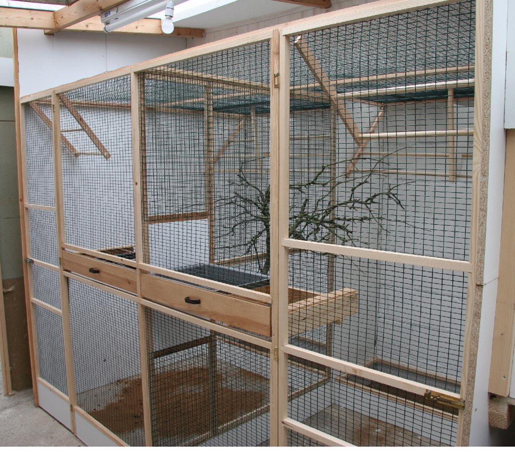 Indoor Aviary for Small Birds
