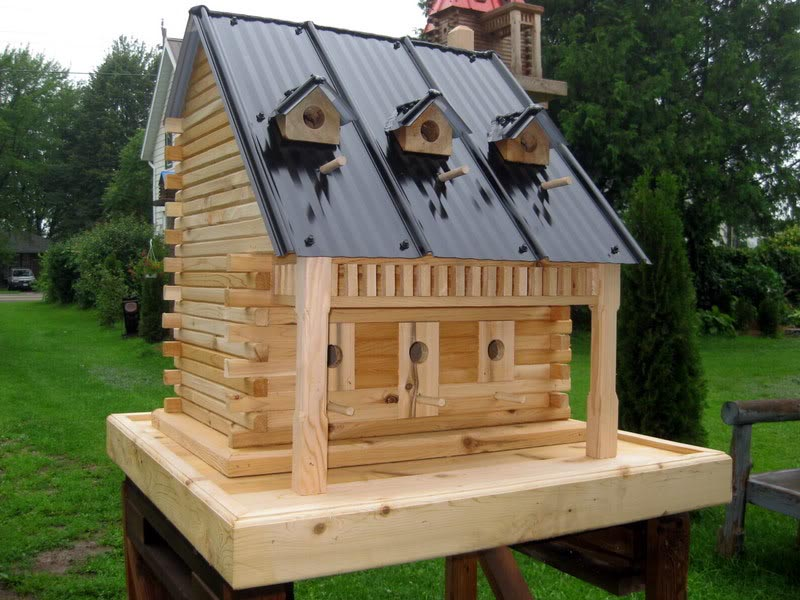 Large Bird Houses Plans