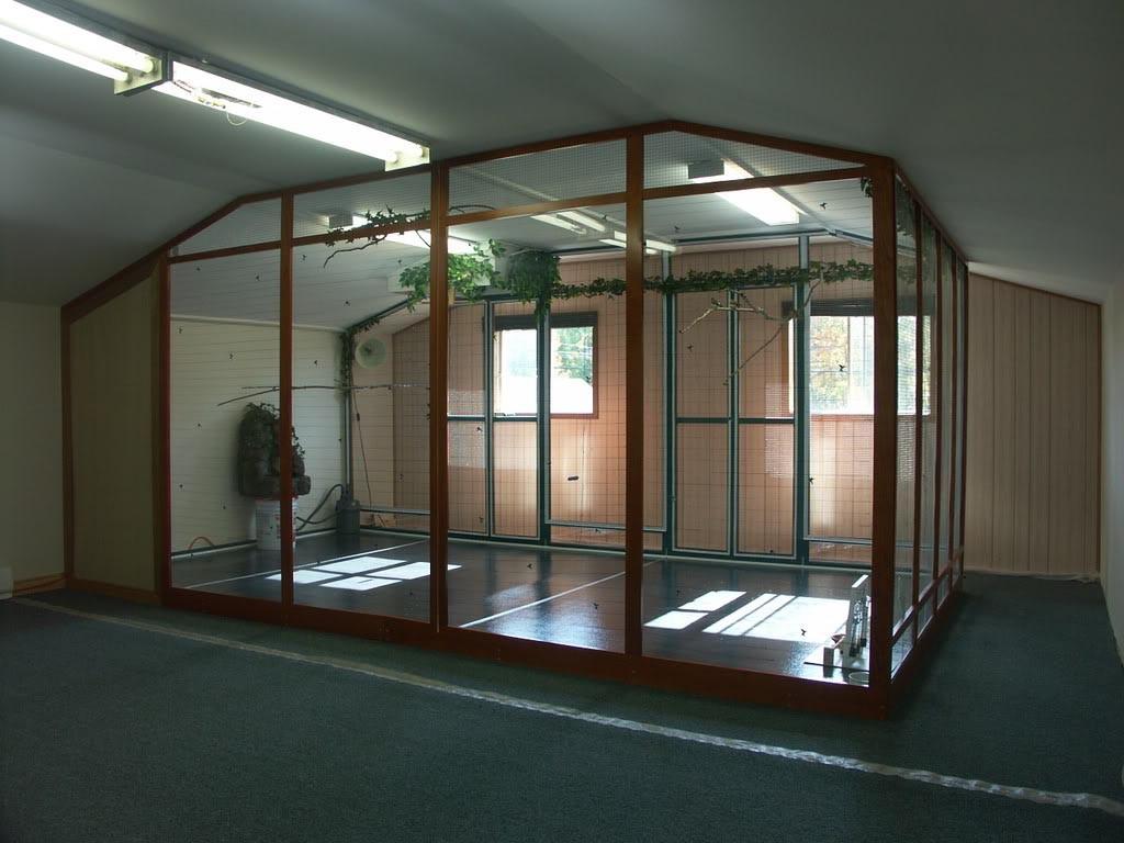 Large Indoor Bird Aviary