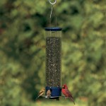 Large Squirrel Proof Bird Feeder