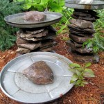 Make a Bird Bath for Hummingbirds