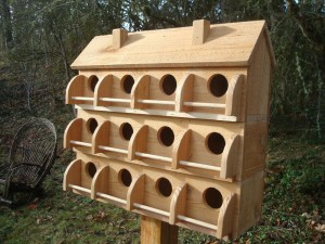 Martin Bird House Kits