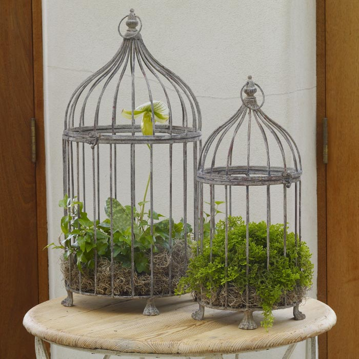 Metal Decorative Bird Cages