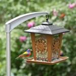 Modern Bird Feeder Pole
