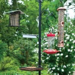 Multi Bird Feeder Station