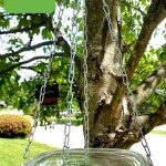 Non Toxic Concrete Sealer for Bird Bath