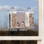 One Way Glass Bird Feeder