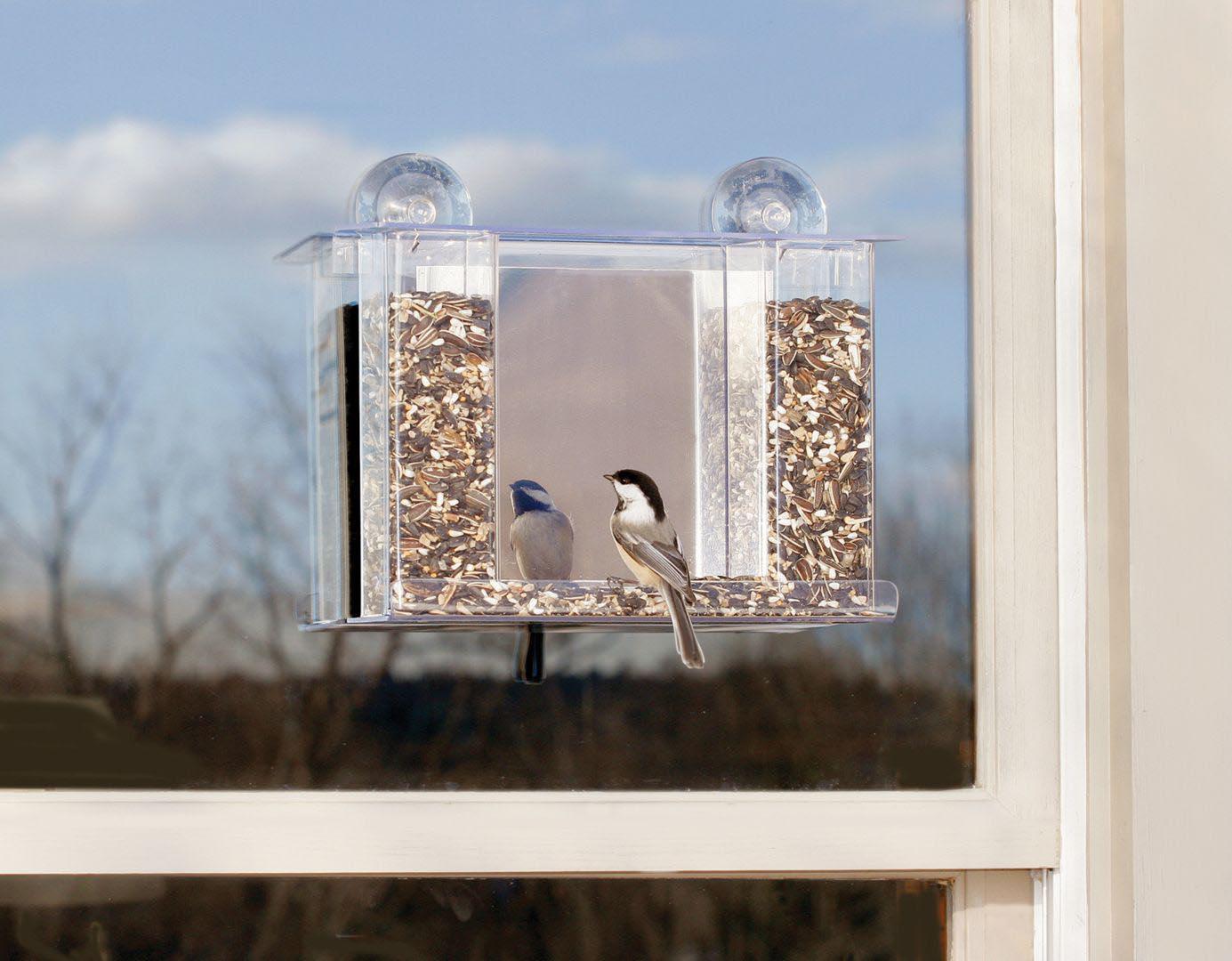One Way Glass Bird Feeder