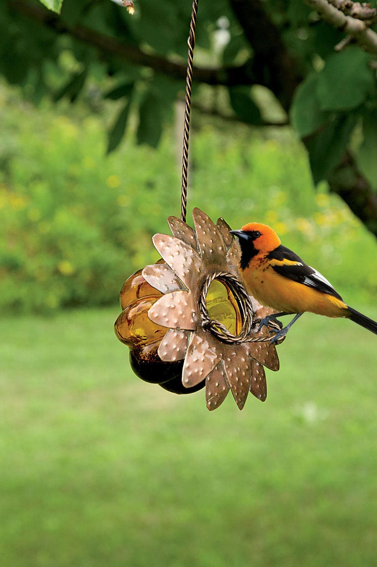 Oriole Bird Feeder Reviews
