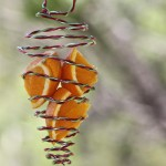 Oriole Bird Feeders Make Your Own