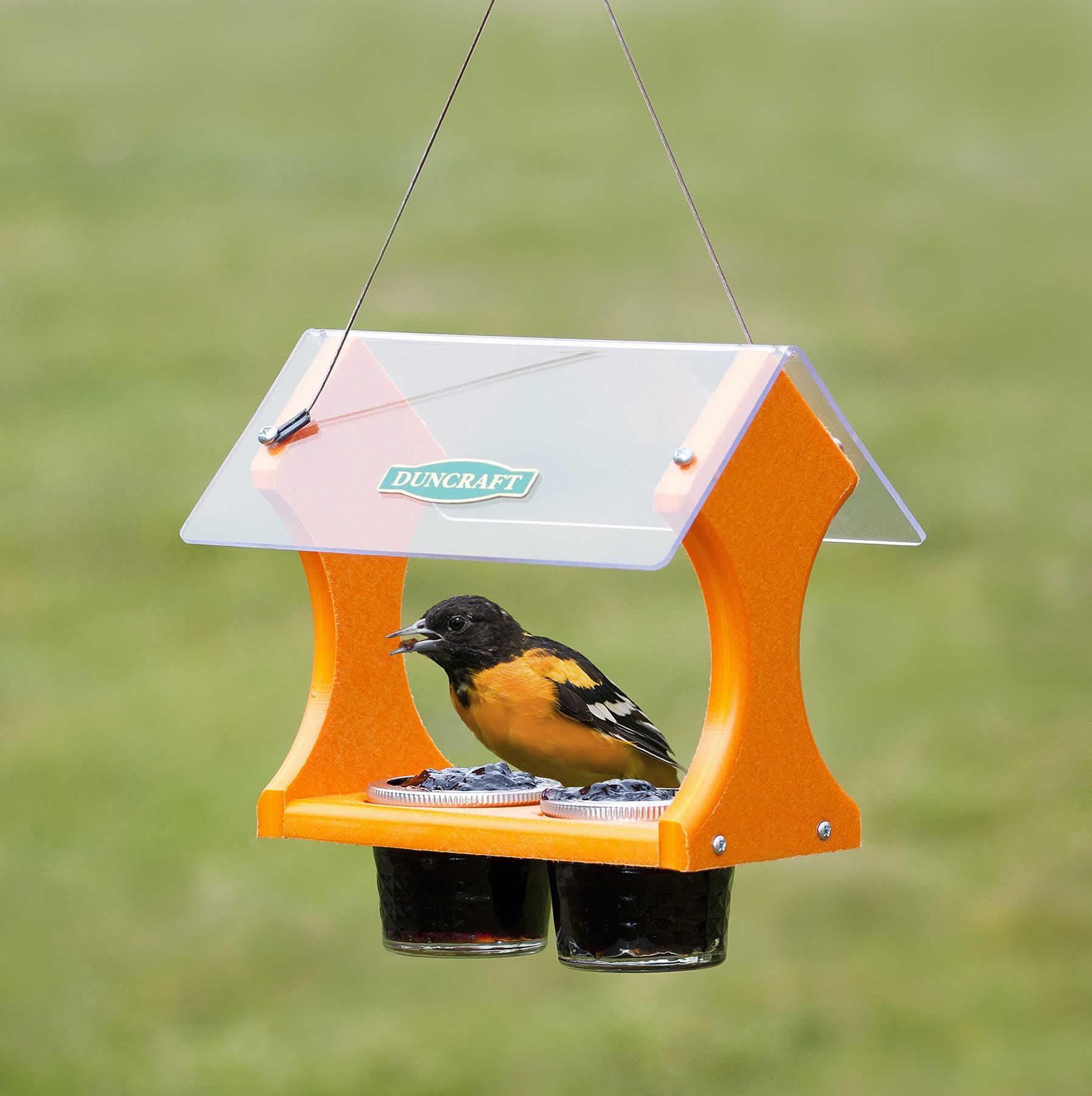Oriole Grape Jelly Bird Feeder
