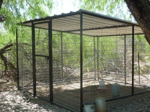 Outdoor Bird Aviaries Perth