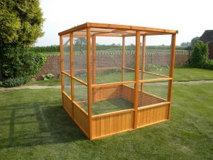 Outdoor Bird Aviary Plans