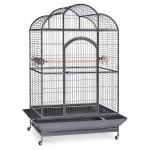 Palmetto Victorian Bird Cage