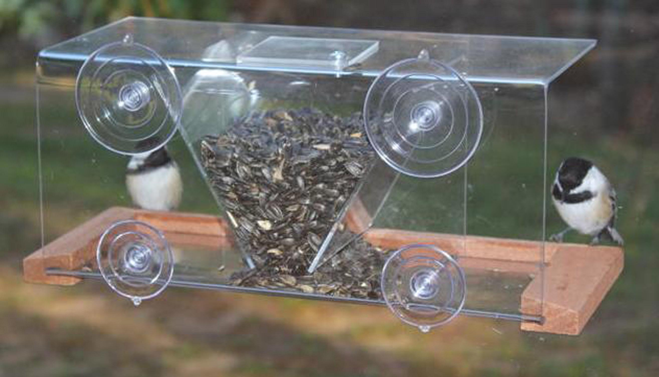 Panoramic in House Window Bird Feeder