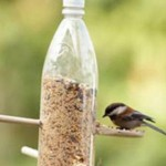 Plastic Bottle Bird Feeder With Wooden Spoons