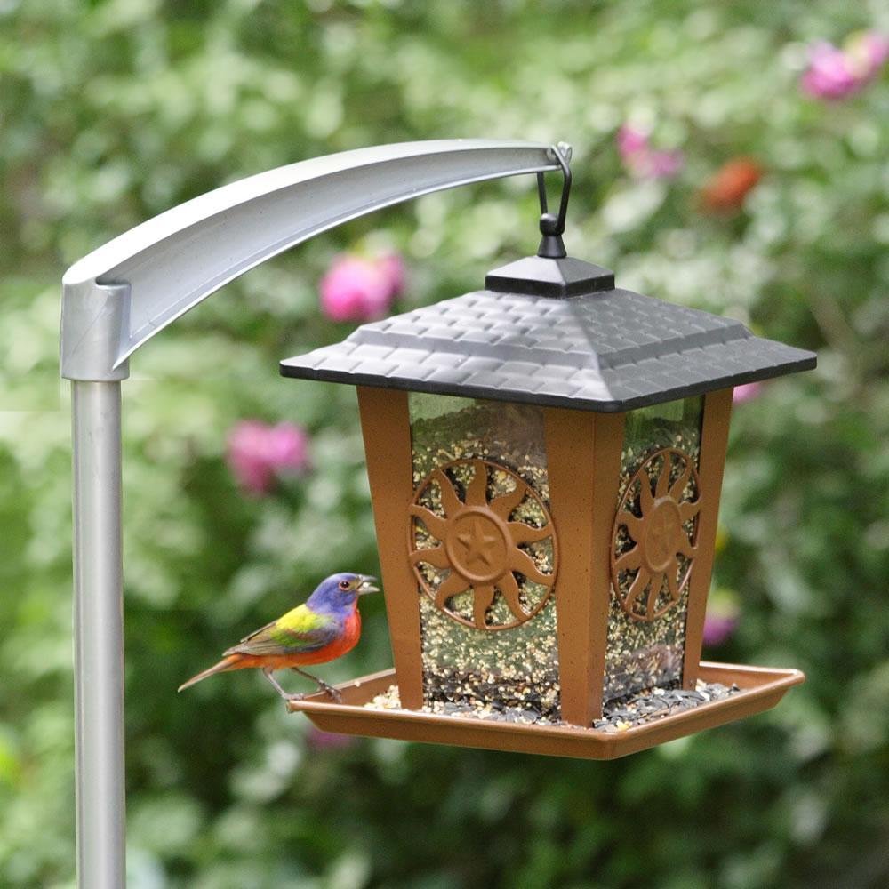 Pole to hang bird feeder birdcage design ideas for Bird feeder pole plans