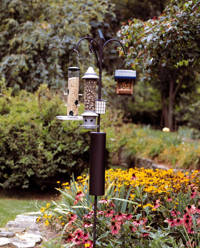 Raccoon Baffle Bird Feeder Pole