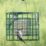 Raccoon Proof Bird Feeder Baffle