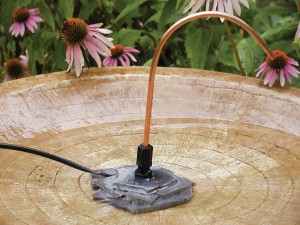 Small Bird Bath Heater