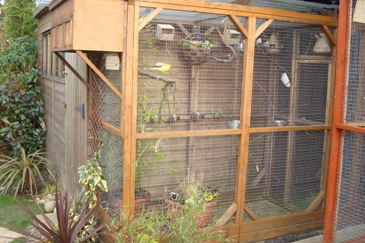Small Outdoor Bird Aviary