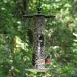 Squirrel Proof Bird Feeder Pole Baffle