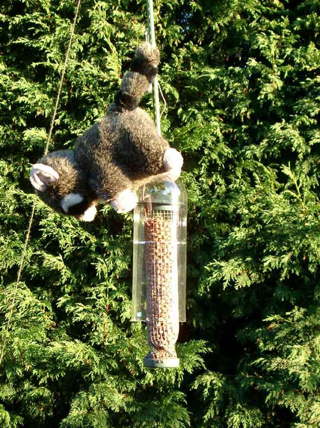 Squirrel Proof Bird Feeder Pole DIY