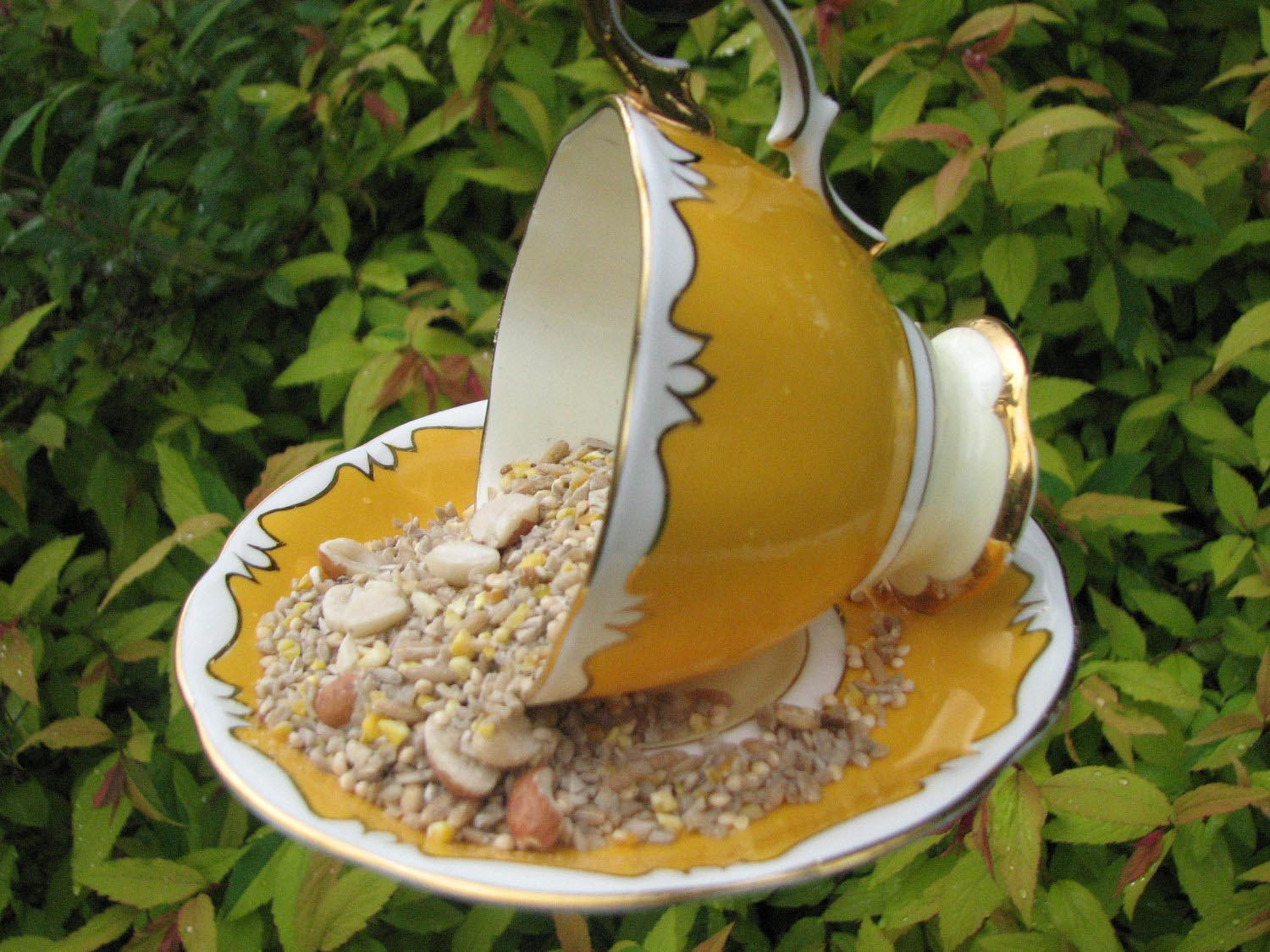 Teacup Bird Feeder Hanging