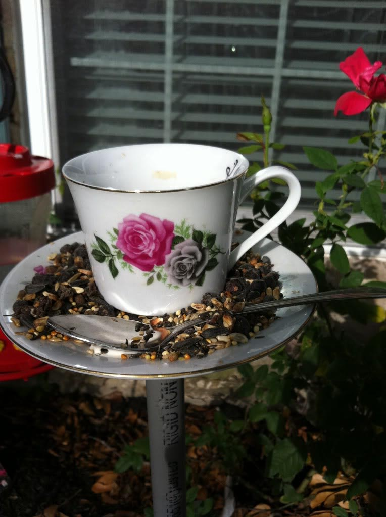 Teacup Bird Feeders Craft