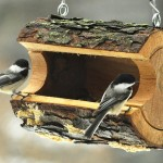 Unique Bird Feeder Designs