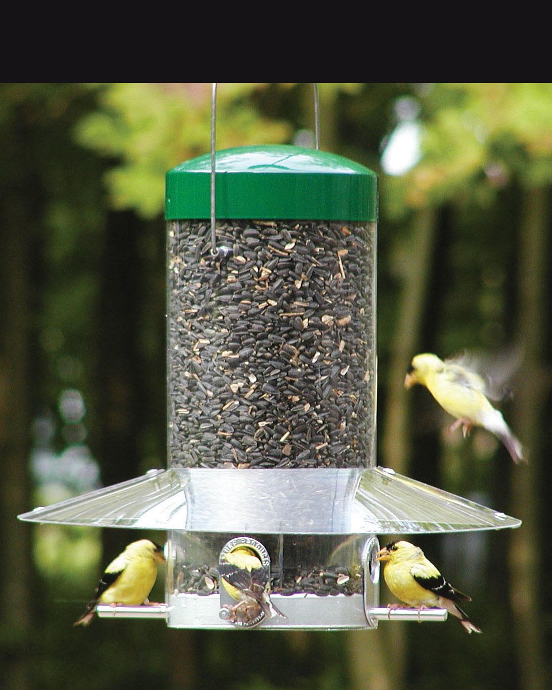 Vari Craft Bird Feeder