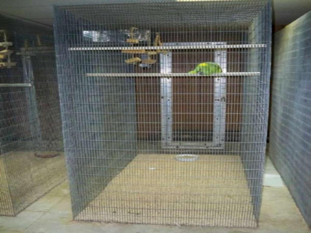 Walk in Bird Aviary Cage Large