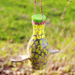 Water Bottle Bird Feeders