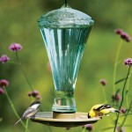 Water Feeder for Birds