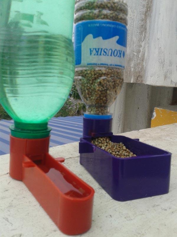 Water Feeders for Birds
