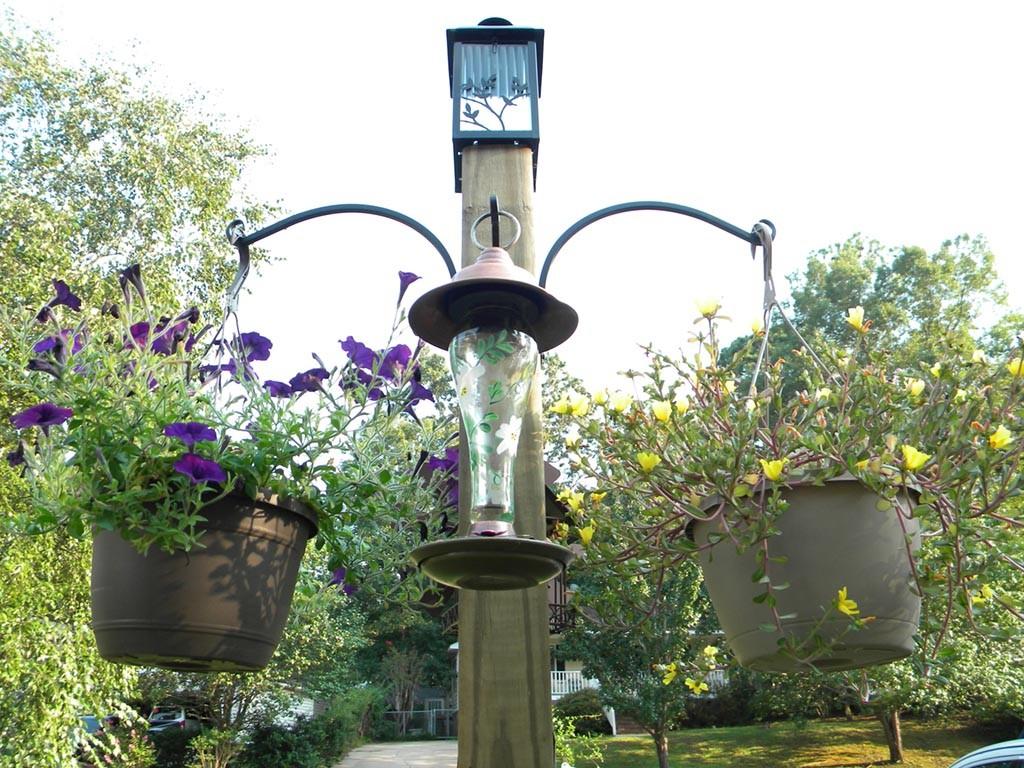 Ways to Hang Bird Feeders
