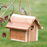 Where to Hang a Wren Bird House