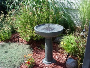Where to Put a Bird Bath in the Garden
