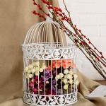 White Decorative Bird Cage