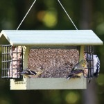 Wild Birds Unlimited Oriole Feeder