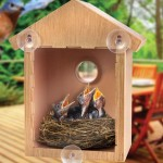 Window Bird House with Two Way Mirror