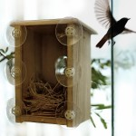 Window Box Bird House