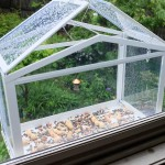Window Mount Bird House